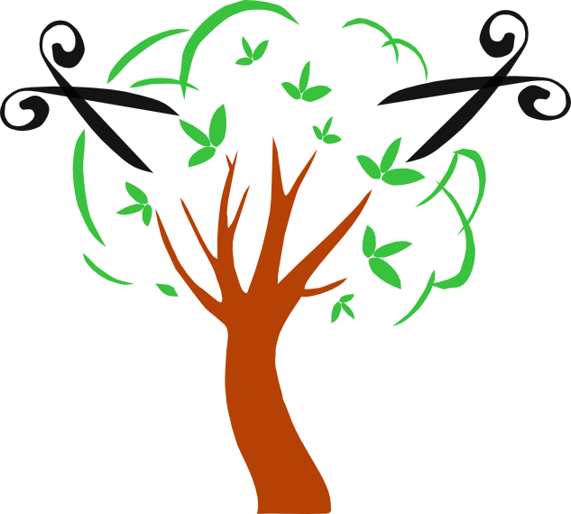 Какие удобрения нужны для растений. Советы садовников