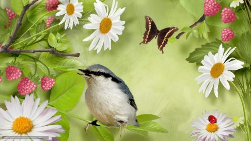 """Биопрепараты и """"желанные друзья"""" для защиты растений"""