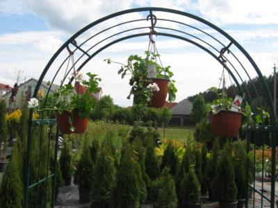 Садовые центры в Беларуси