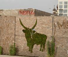 Эко-граффити - как сделать граффити из мха. Биодизайн в Минске