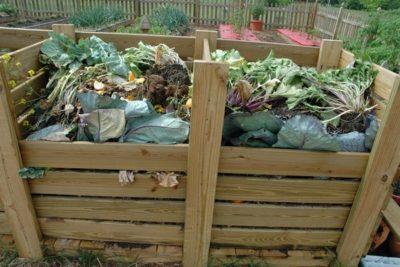 Органические удобрения – навоз, компост, торф. Удобрения для сада