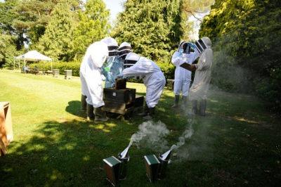 Отчет о семинаре пчеловодов