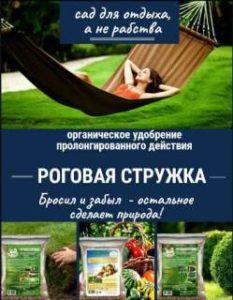 Очистка бассейна и уход - советы специалистов.